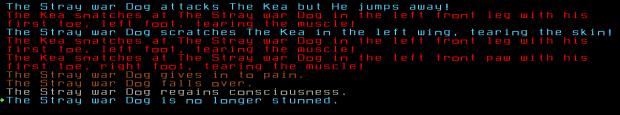 kea_dog_fight